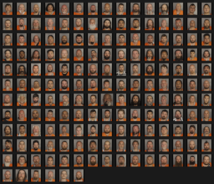 Mugshot_Matrix